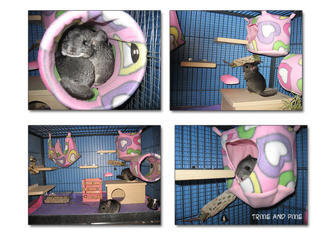 chinchillas, fleece house, fleece tunnel