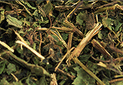 nettle for chinchillas, rabbits, guinea pigs